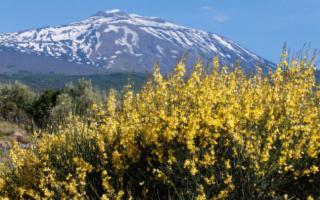 'La mia' Etna, sentieri e bivacco a prato fiorito