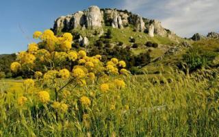 Alla scoperta di Monte Genuardo, scrigno di tesori dei Monti Sicani