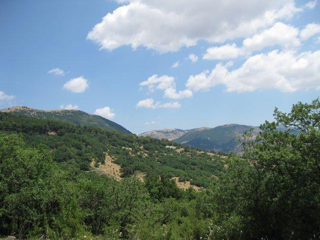 Monte Genuardo