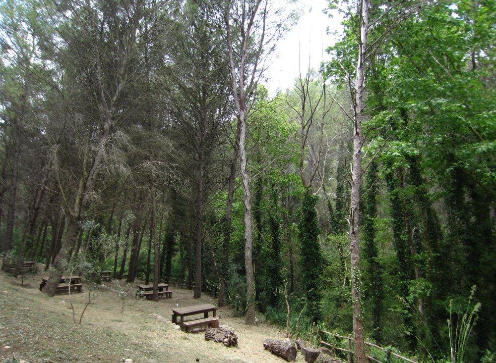 Parco forestale Calaforno