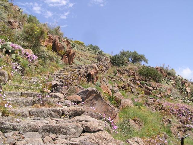 Una ripida scalinata di pietra viva ad Alicudi - Eolie