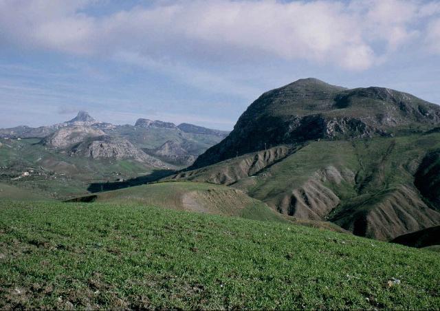 la-riserva-naturale-integrale-di-monte-conca