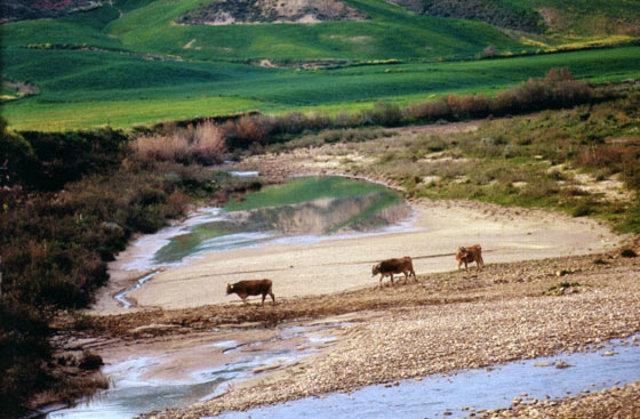 Riserva Naturale Monte Capodarso e Valle dell'Imera meridionale