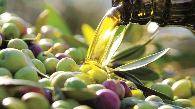 L'olivicoltura del Futuro: Identità, aggregazione, qualità, mercato