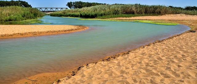 riserva-naturale-foce-del-fiume-belice