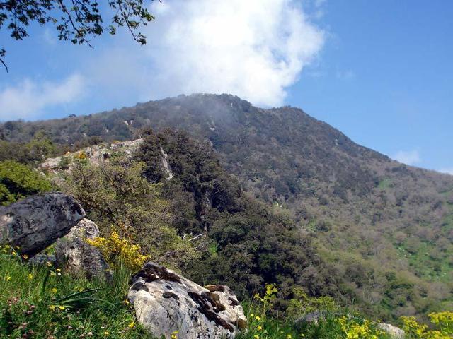 La Riserva Naturale Orientata Rossomanno Grottascura Bellia