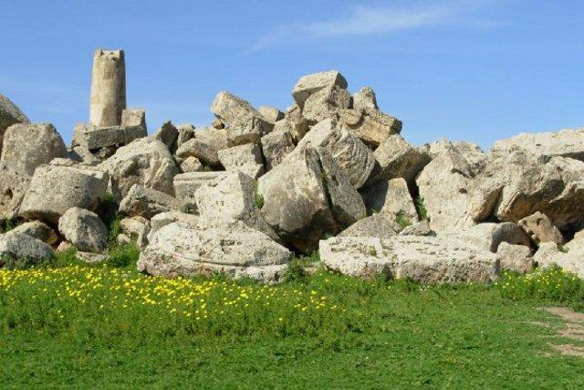 Le rovine del Tempio G di Selinunte