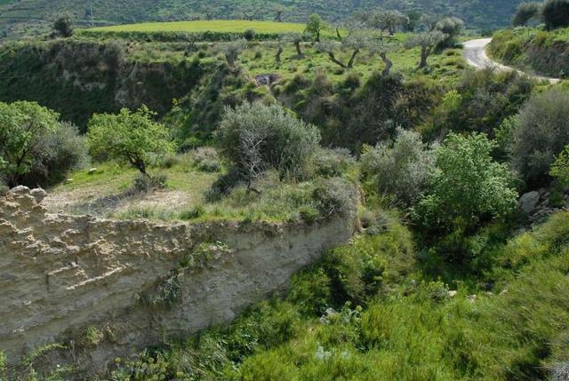 riserva-naturale-del-vallone-di-piano-della-corte