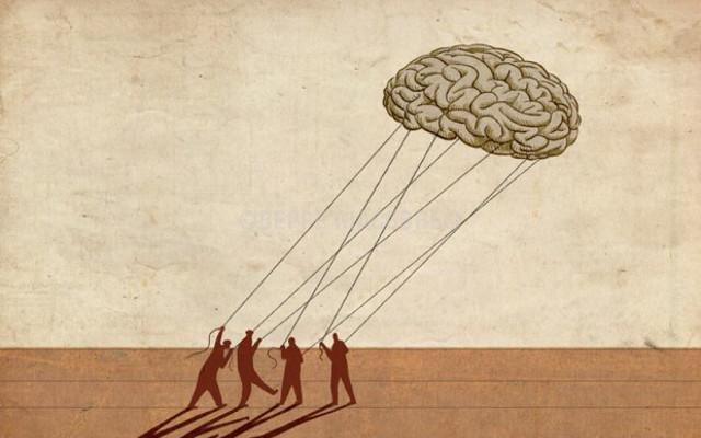 Cervelli in fuga... verso Sud!
