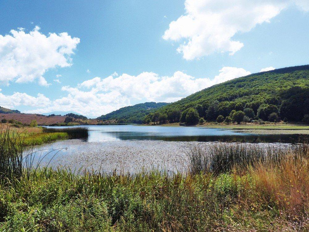 Escursione al Bosco di Mangalaviti e al Lago Biviere di Cesarò