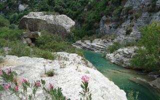 Le Rane di Aristofane ed un tuffo alla Cava Grande del Fiume Cassibile