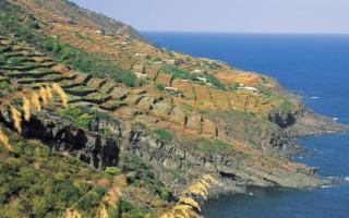 Pantelleria, dove nasce il ''nettare degli dei''