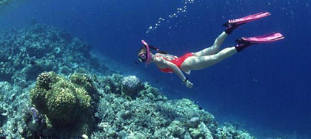 Snorkeling a Favignana