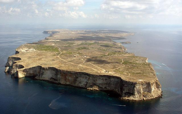 A Lampedusa, un albero per ciascun abitante