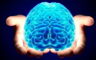 Al via la Settimana del Cervello
