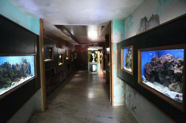 l'Acquario marino tropicale di Siracusa