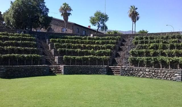 Il terrazzamento all'interno delle Cantine Patria a Castiglione di Sicilia