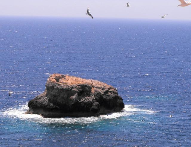 """Il """"Panettone"""" di Lampedusa"""
