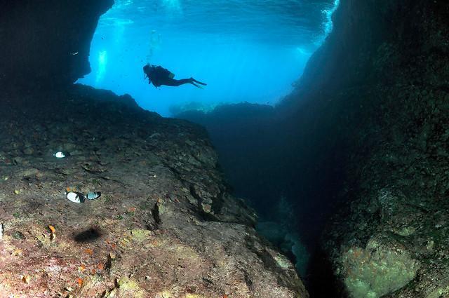 Un sub immerso a Punta Cappellone - Lampedusa