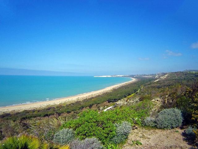 La lunga spiaggia di Torre Salsa