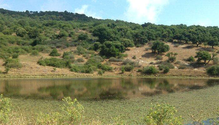 Lago di Bomes