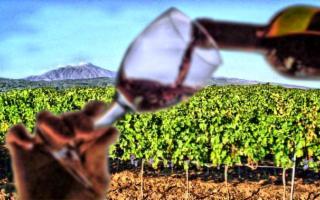 La Strada del Vino Etna Doc