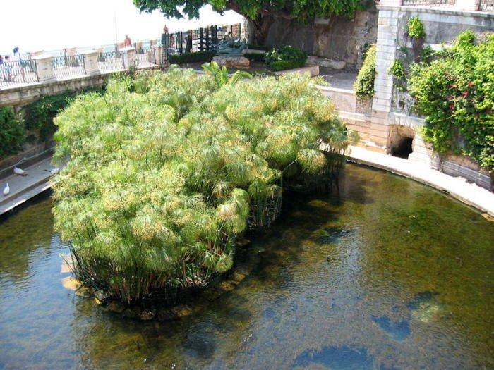 Acquario di Siracusa