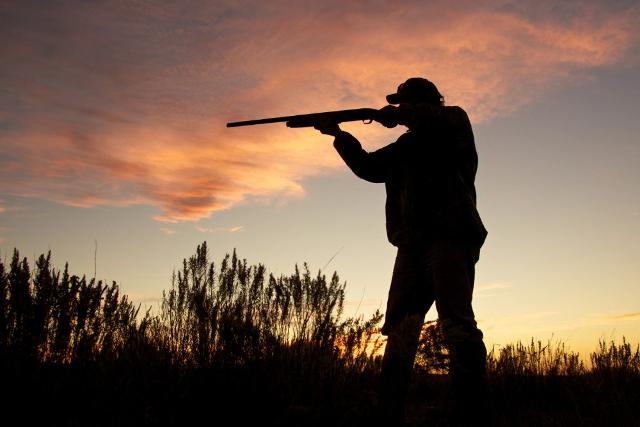Contro le pre-aperture della stagione di caccia il Wwf ha presentato nove ricorsi ai tribunali regionali