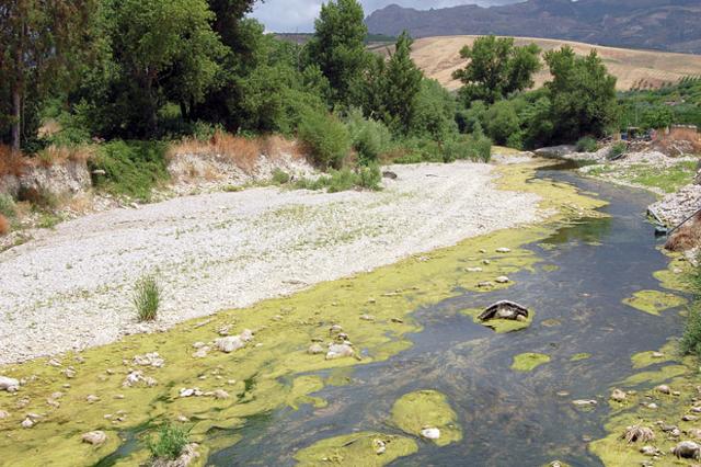 Un tratto del fiume Platani