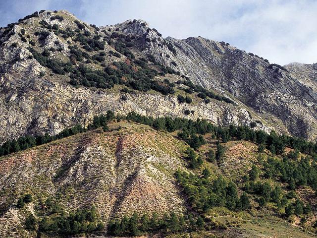 Monte Cammarata che, con i suoi 1524 metri, è la seconda montagna più alta (la prima è Rocca Busambra, 1613 metri) della catena dei Monti Sicani