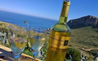 La Casa vinicola Fazio al Cous Cous Fest per Amatrice