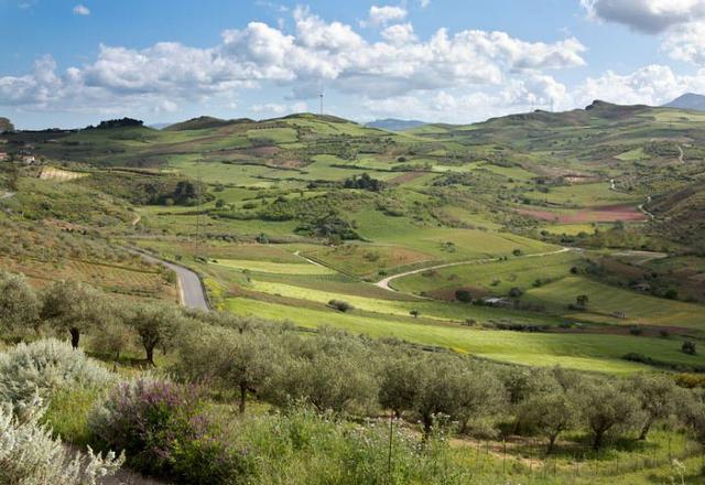 Il panorama campestre che si gode da Baucina
