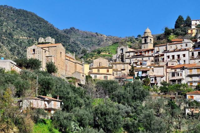 Sulla costa saracena l 39 incantevole brolo guida sicilia - Allontanare i gatti dal giardino ...