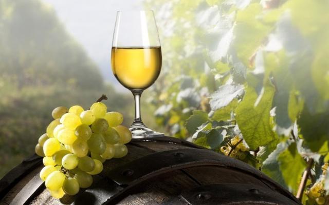 Un bicchiere di vino Chardonnay