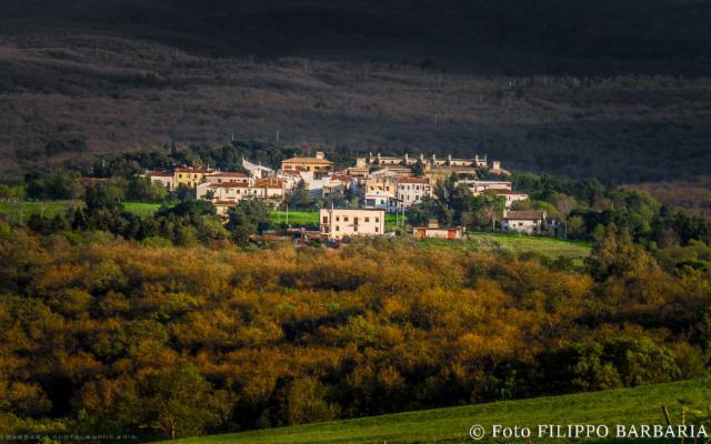 Il bosco di Ficuzza, antica dimora dei Borboni