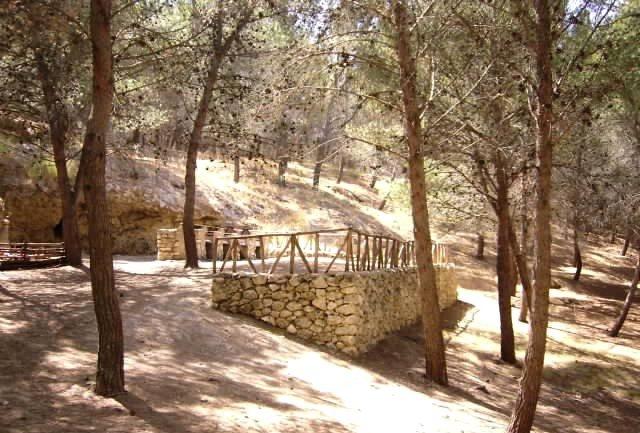 Zona boschiva di Firrio