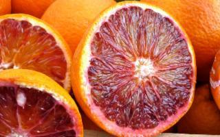 L'Arancia rossa di Sicilia, vero toccasana per ogni malanno