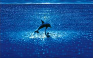 ''Le Grand Bleu'' de Taormina