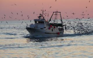 Grazie ad un accordo privato, i pescherecci italiani potranno pescare in acque libiche