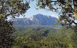 Ficuzza e la Rocca Busambra