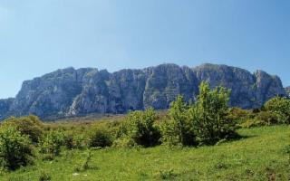 Escursione a Ficuzza, al Bosco del Cappelliere
