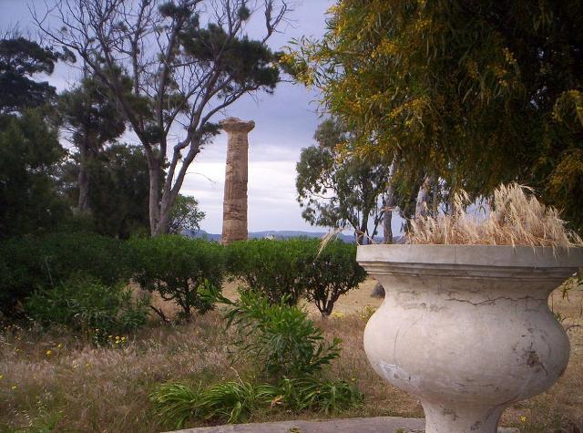 Una colonna dorica nella zona del Bosco Littorio a Gela