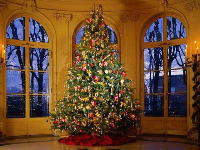 L'abete di Natale è il grande albero che nella tradizione pagana dell'Europa centrale e della zona alpina rappresenta il simbolo dell'albero cosmico che collega la terra al cielo e come il sole nutre tutti gli esseri viventi con i suoi frutti...
