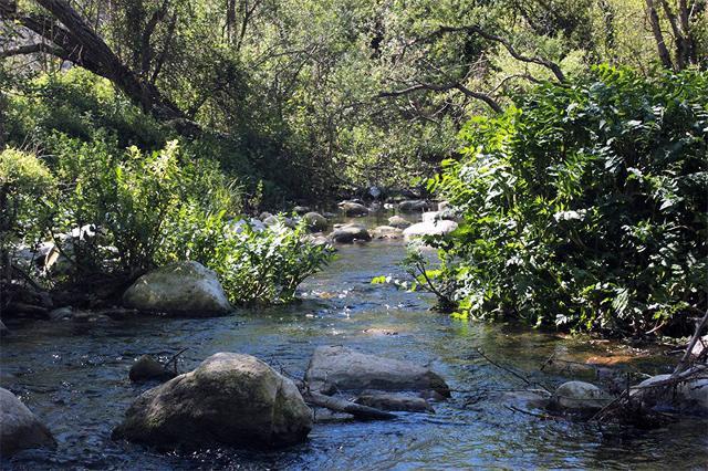 Un tratto del fiume Irminio