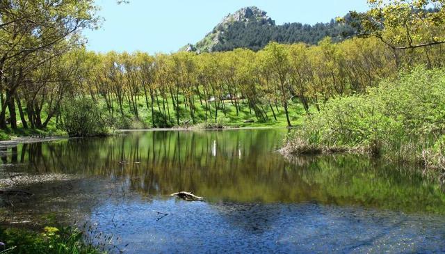 Laghetto nella Riserva Naturale di Sambughetti e Campanito