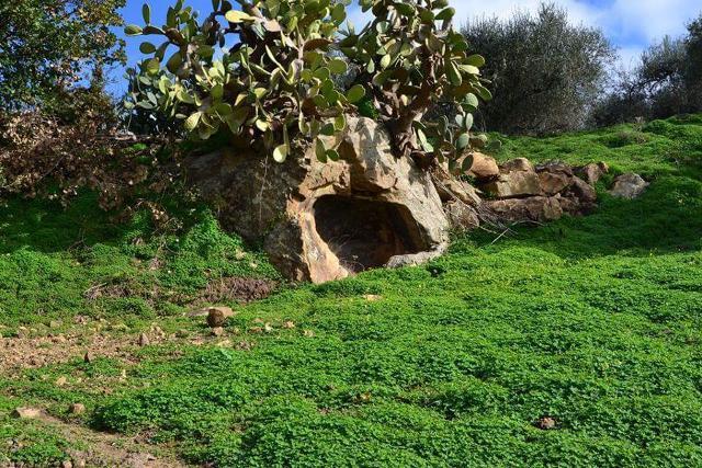 Una tomba rupestre nelle campagne di Roccapalumba