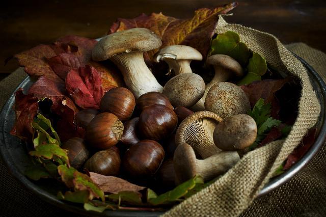 ottobrata-sagra-dei-funghi-e-delle-castagne