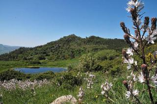 La Riserva Naturale Orientata di Monte Altesina