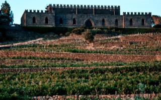 Una visita alla ''Fortezza'' del Vino: il Castello della Solicchiata