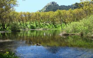 Ponte dell'Immacolata - Viaggio tra i Monti Erei